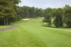 Golf fairway lined with trees leading to green and sand traps Royalty Free Stock Photo