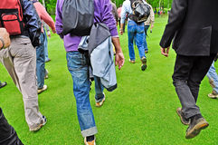 Golf fans. Golf, fans walk on the green Stock Image