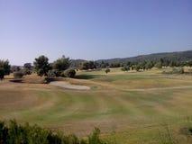 golf feeld bomen Stock Foto