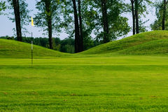 Golf field. With nice green, flag and trees in background Royalty Free Stock Photo