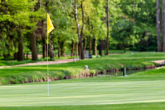 Golf field. With yellow flag near forest Royalty Free Stock Photos