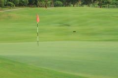 Golf field Stock Photos