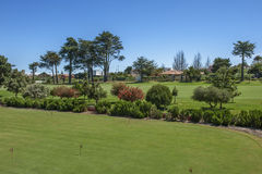 Golf field Fotos de archivo libres de regalías