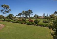Golf field Fotografía de archivo