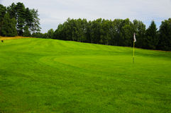 Golf field. Picture of a golf field located at the forest in Janov Czech Republic Royalty Free Stock Photography
