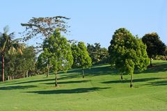 Golf field royalty free stock photography