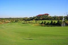 Golf field Stock Photography