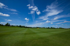 Golf field active leisure. Golf club field grass course active leisure royalty free stock image