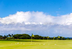 Golf field background Stock Images