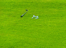 Golf field background Stock Photo