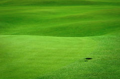 Golf field with a ball hole. Golf background. Detail of golf field with a ball hole Stock Image