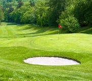 Golf field. green grass. spring landscape Royalty Free Stock Photos