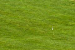 Golf field hole and dozen golf balls Royalty Free Stock Photos