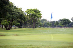 Golf field with hole flag Stock Photography