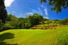 Golf field at island Praslin, Seychelles. Nature background Royalty Free Stock Photo