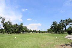 Golf field summer landscape Royalty Free Stock Images