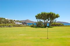Golf field and tree at luxury hotel Stock Photography
