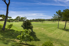 Golf field in the Vilamoura, Portugal Royalty Free Stock Image