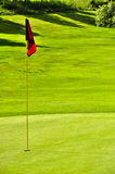 Golf field withred flag hole and forest background Royalty Free Stock Photos