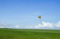 Golf flag. Green grass,one golf-flag on putting green Royalty Free Stock Photos
