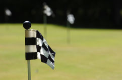 Golf flag. On the green court with blur flags in background Stock Photography