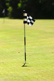 Golf flag on court. Golf flag on the green court as a vertical image Stock Images