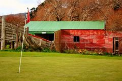 Golf flag on green. With old sheep shed building in background Stock Photo