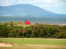 Golf flag on the green at a seaside course. Golf flag fluttering in the wind on a links course in Cumbria Royalty Free Stock Images