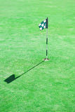 Golf Flag in Hole Stock Image