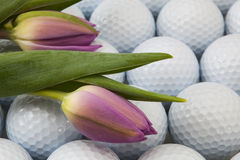 Golf and flowers Stock Photo