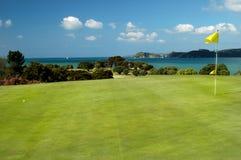 Golf - gelber Pin Stockbilder