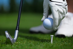 Golf glove ball. Club tee golfplayer close-up royalty free stock images