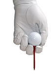 Golf Glove, Ball and Tee