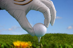 golf glove with ball on tee Stock Images