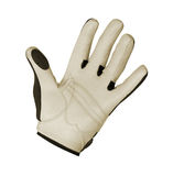 Golf Glove Stock Image