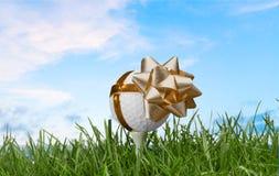 Golf. Gift ball  ball bow tee sport royalty free stock photos