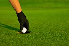 Golf, golfer hand retrieving the ball in hole. On the green Stock Photography