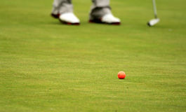 Golf. Er lining up a putt on the  course Stock Photography