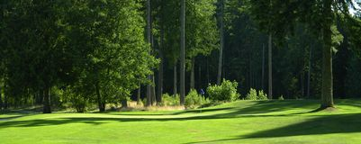 Golf Golfing Course Green Trees Stock Photos