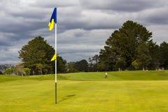 Golf-Grün und Markierungsfahne Stockfotografie