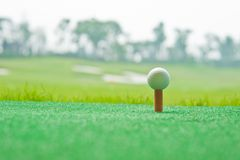 Golf in grass Royalty Free Stock Photo