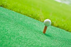 Golf in grass Royalty Free Stock Photos