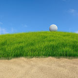 Golf on grass course Royalty Free Stock Photo