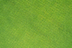 Golf grass field Royalty Free Stock Image