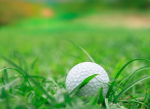 Golf on grass Rough. Golf ball on Rough grass but keep going to the holes Royalty Free Stock Images