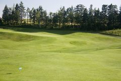 Golf Green. In Prince Edward Island Canada Stock Image