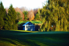 Golf green. Flag on golf green of course with barn Stock Image