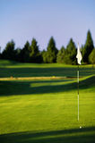 Golf green. Green with ball and flag on a golf course Royalty Free Stock Image
