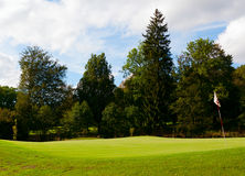Golf Green. With Flag in the Forest Stock Photography