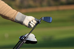 Golf green. Golfer removing his driver from a golf bag royalty free stock photo